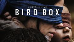 Bird Box: Netflix e Polícia Federal alertam para os perigos de novo jogo de desafios